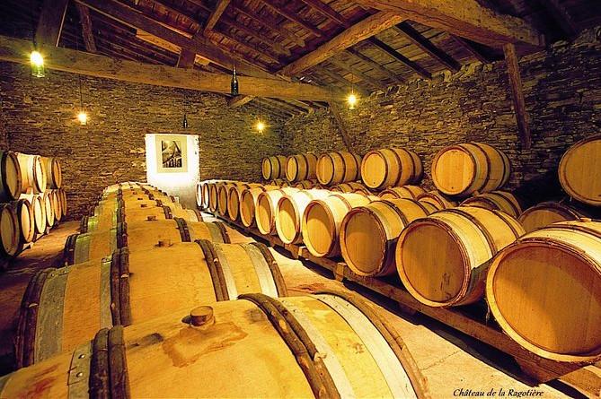 Workshop med hvidvin og ost