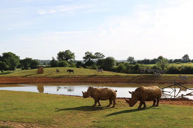 Spring over linjen: Zoo La Boissiere du Dore-billet
