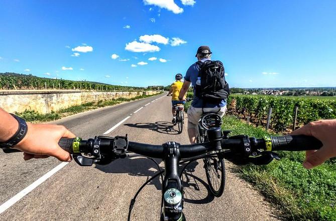 Oplevelse på cykel og smagning i vinmarkerne