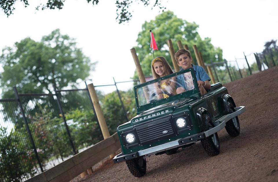 Mini Safari Cars