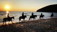 Cala Violina on horseback at sunset