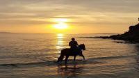 Horseback ride on the full moon