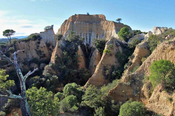 Vilde organer: Storslået landskab, planter, geologi, fuglesang
